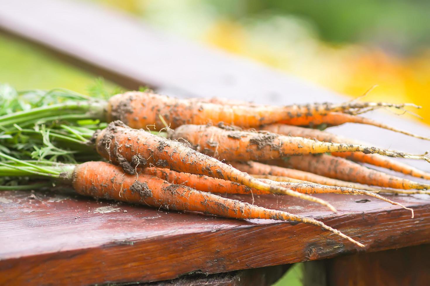 gros plan, de, a, tas carottes photo