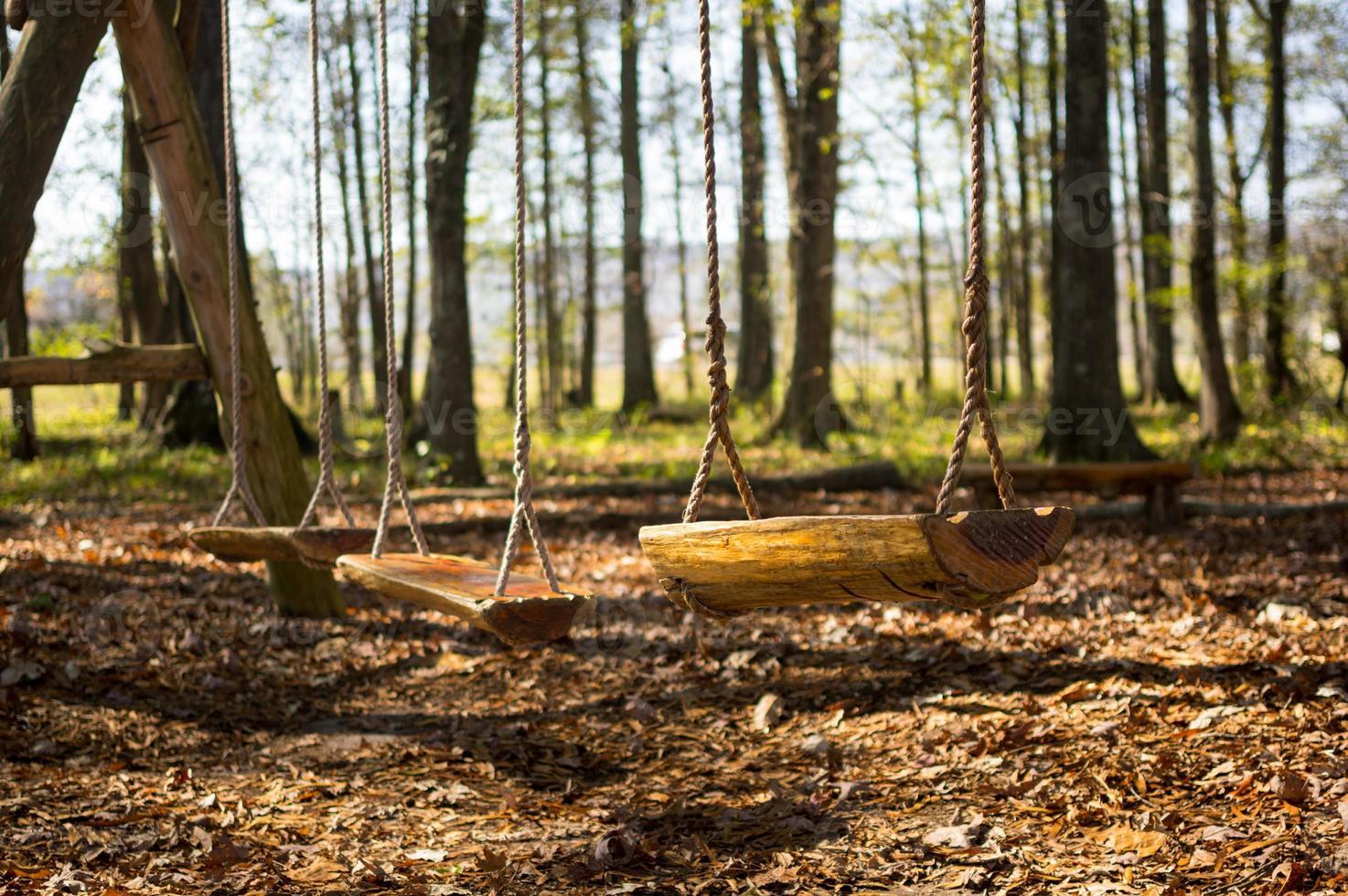balançoire dans les bois photo