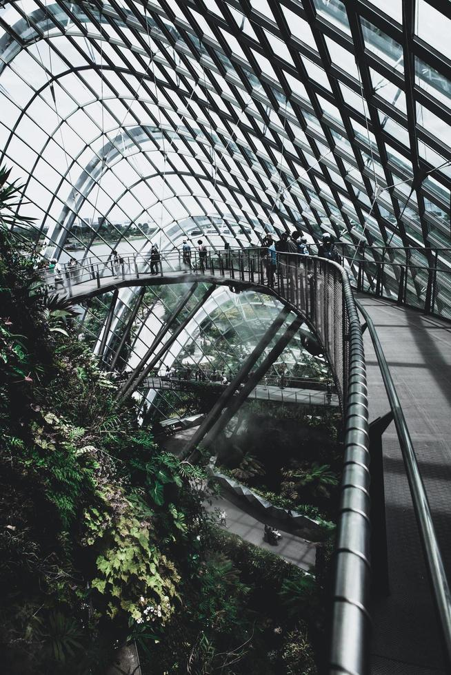 Shanghai, Chine, 2020 - personnes explorant un jardin botanique photo