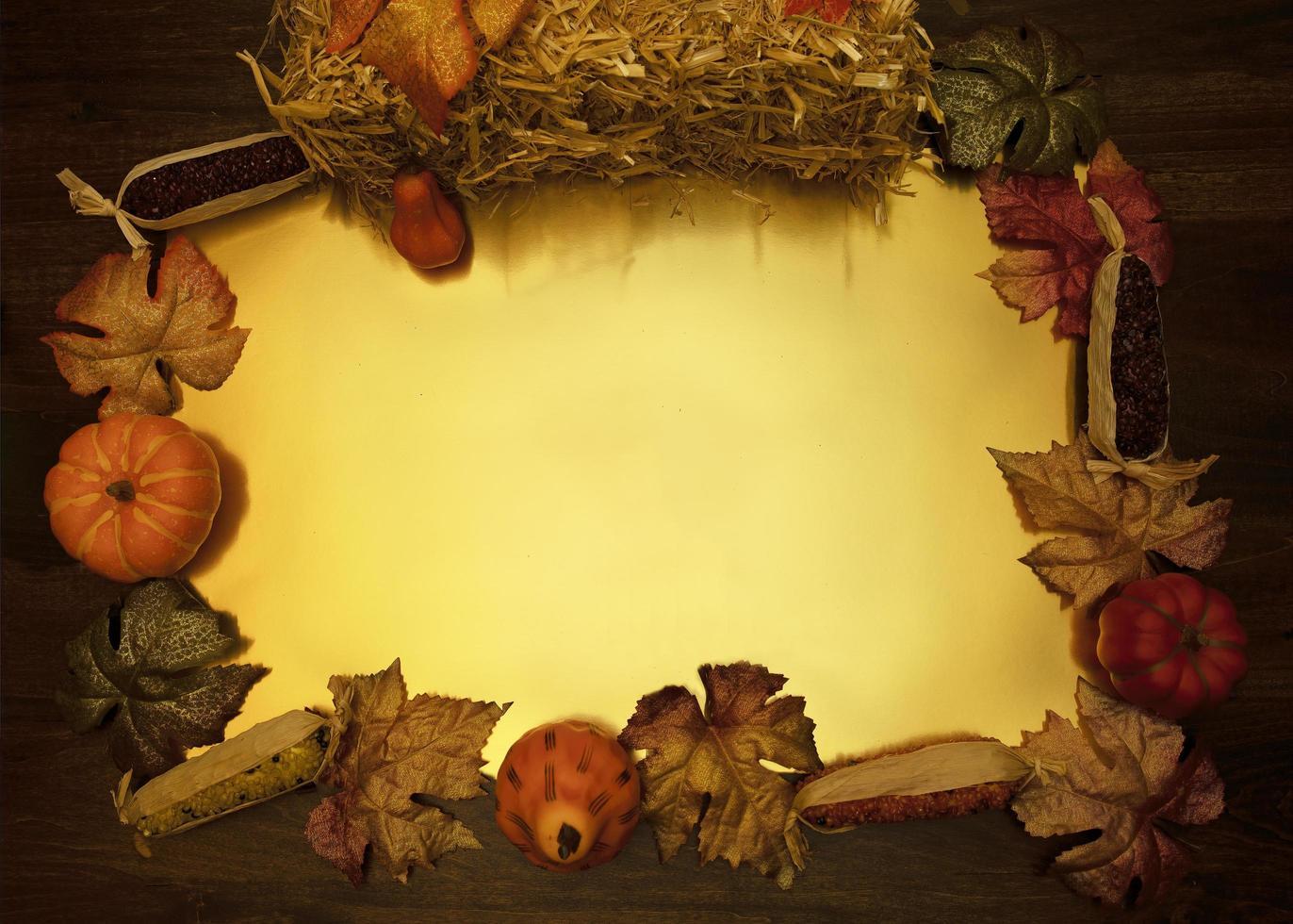 cadre plat la récolte d'automne photo