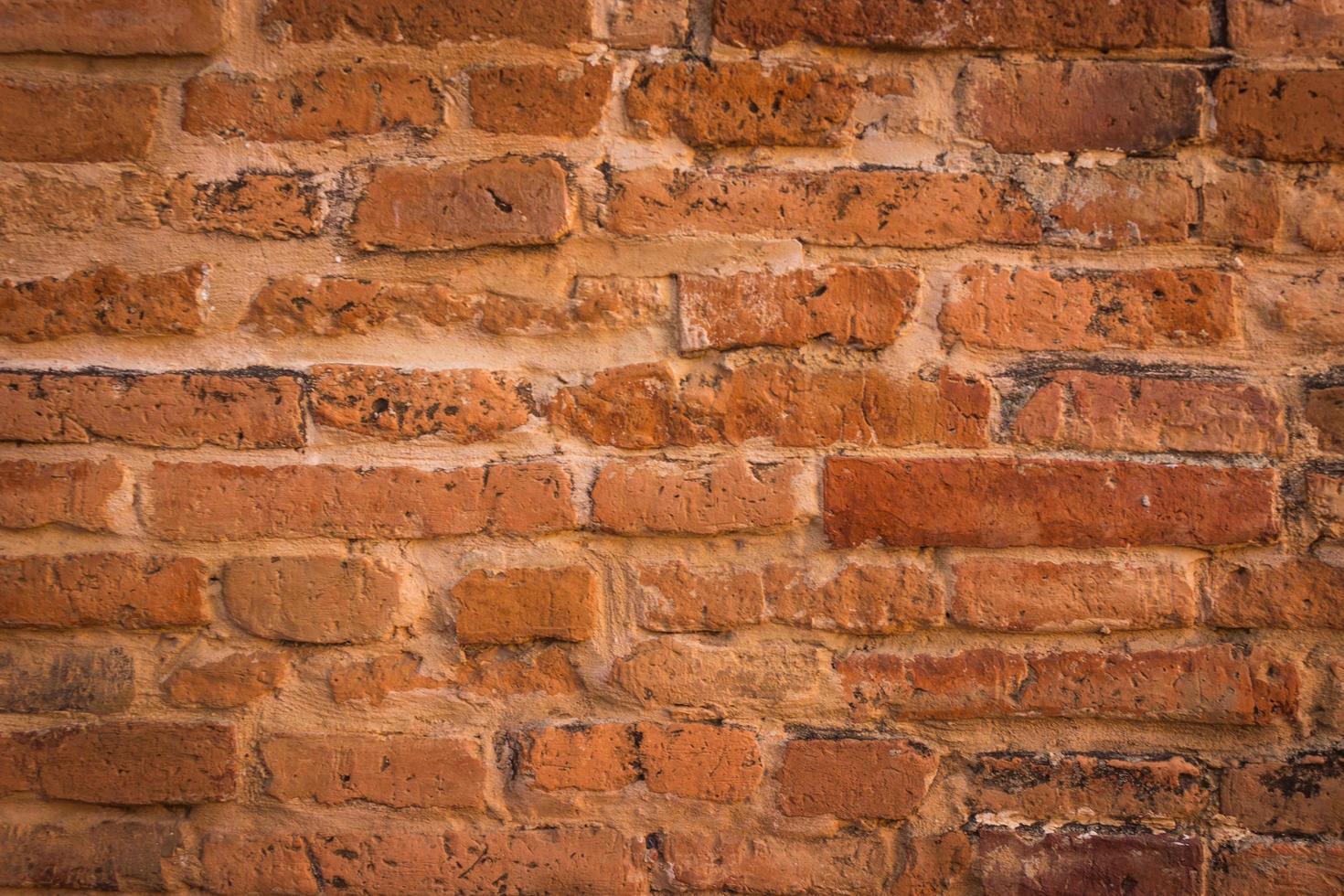 vieux mur de briques photo