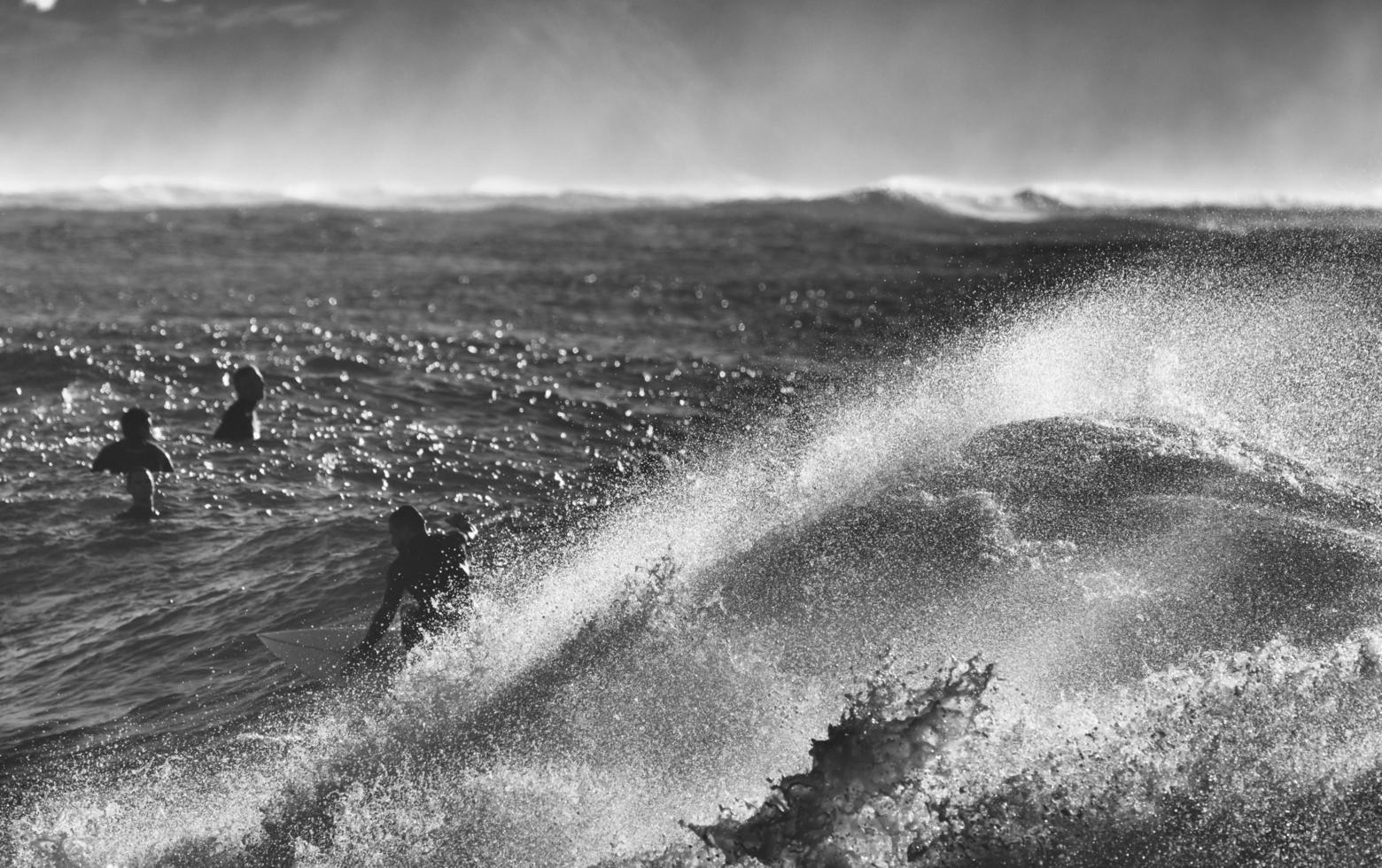 Sydney, Australie, 2020 - niveaux de gris de personnes surfant sur les vagues photo
