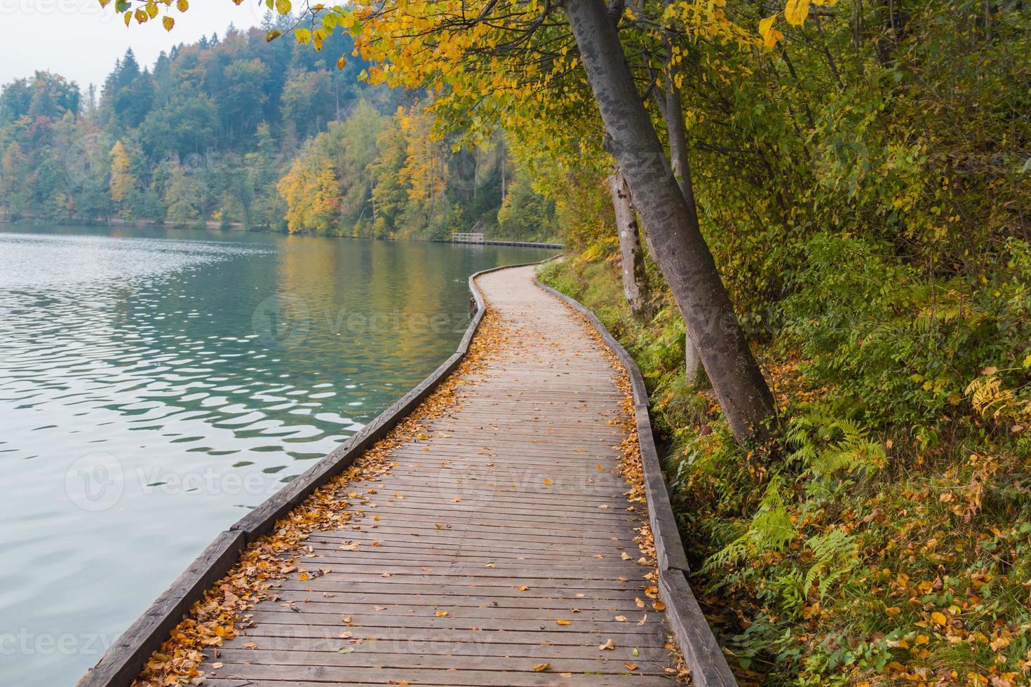 passerelle au bord du lac. photo