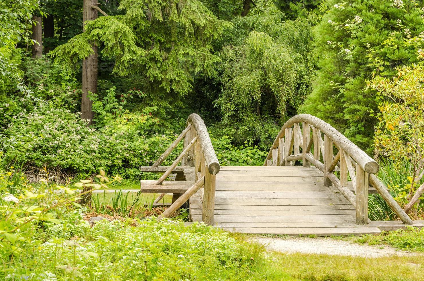 pont en bois le long d'un sentier photo