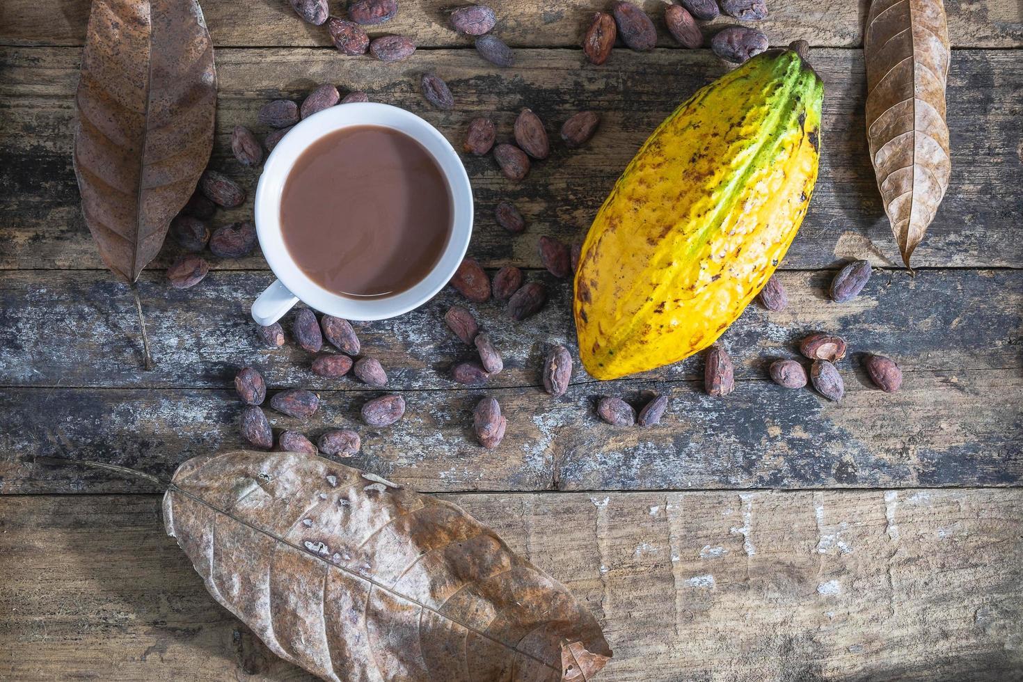 tasse de cacao et fruit de cacao photo