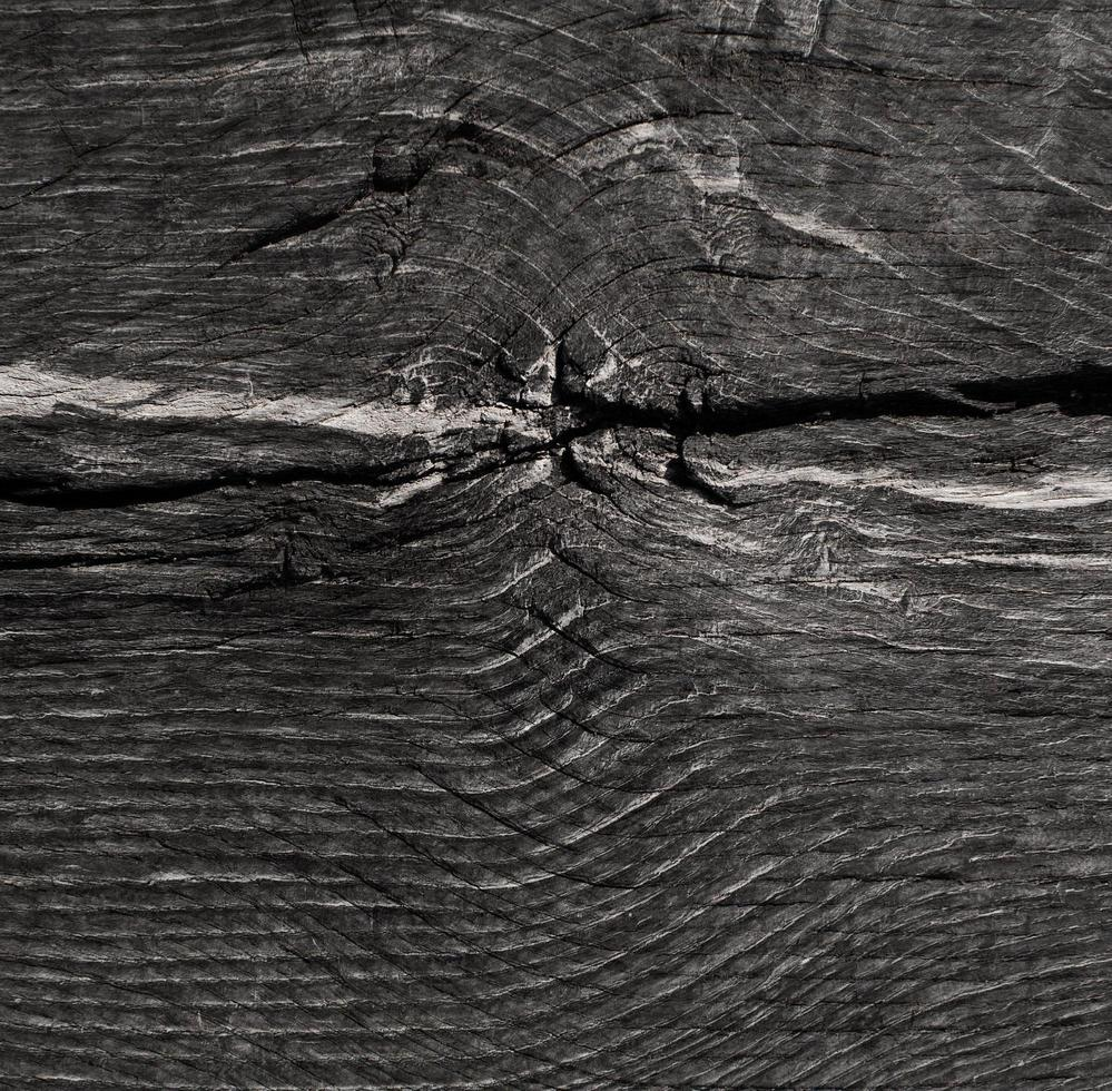 texture de grain de bois photo
