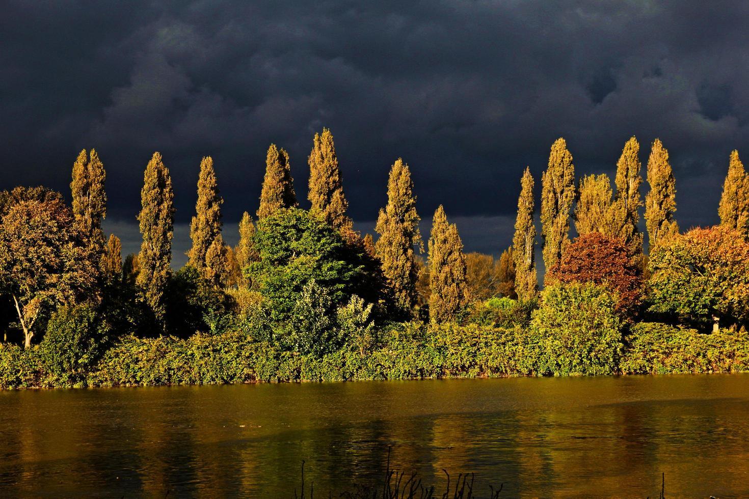 nuages d'orage près des arbres verts et bruns à côté de la route mouillée photo