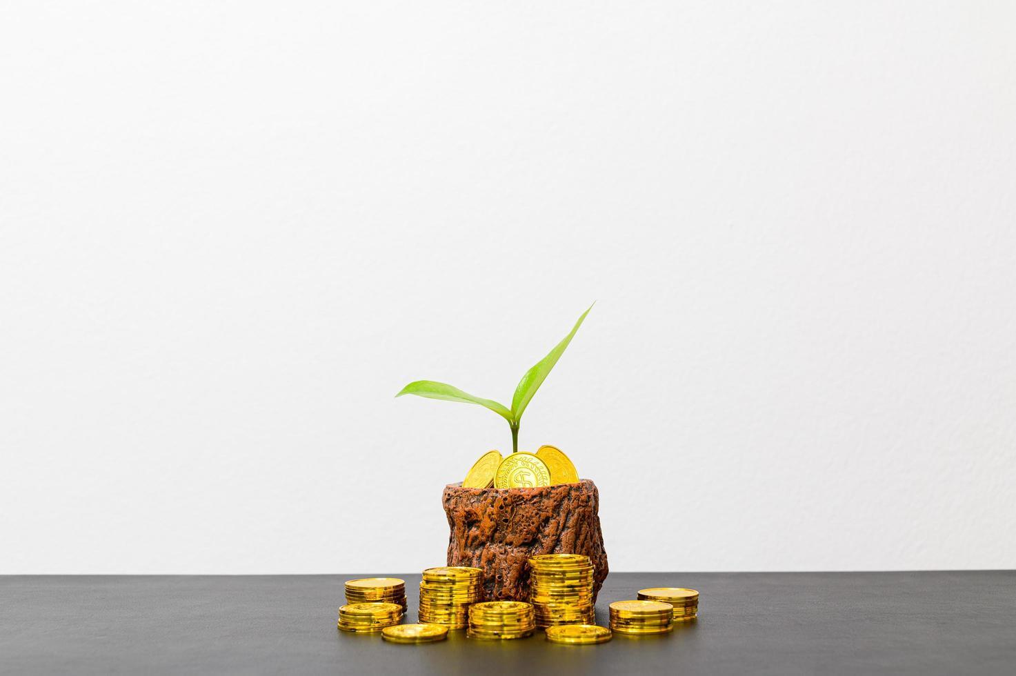 concept de croissance financière avec des pièces photo