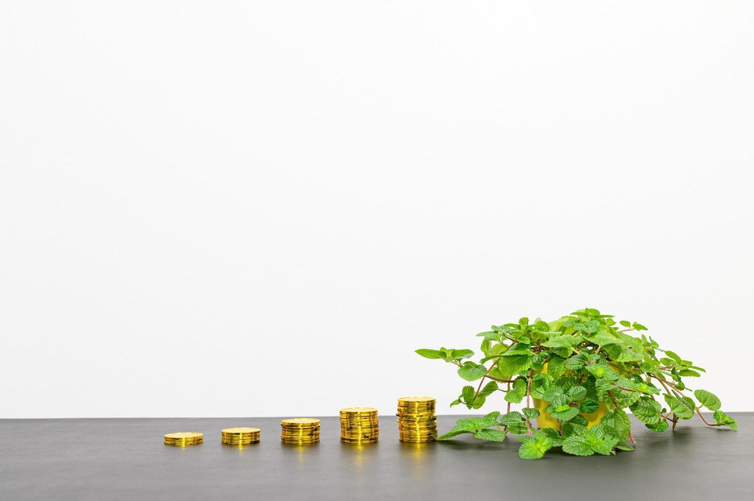 concept de croissance financière photo