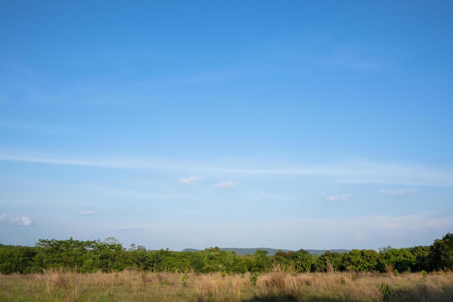 paysage en thaïlande à la campagne photo