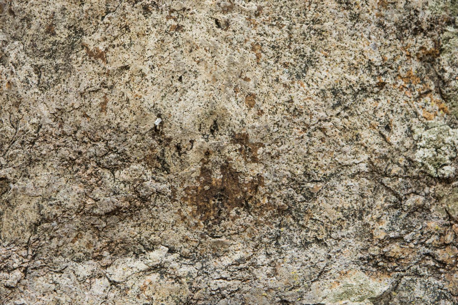 fond de pierre à motifs photo