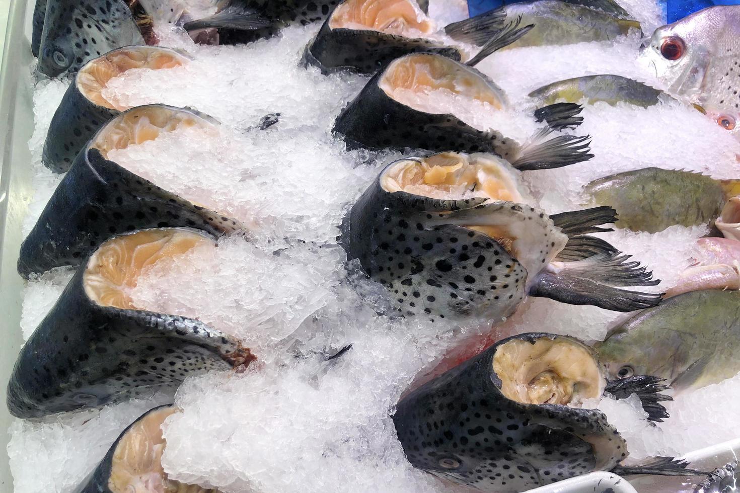 têtes de saumon congelées sur glace vendues au supermarché. photo