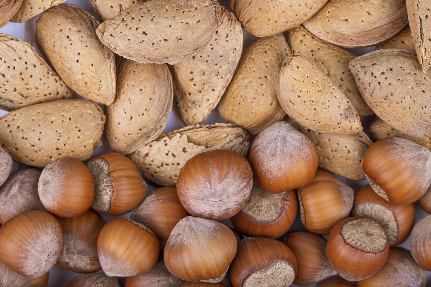 Vue de dessus du mélange de noix en coquille de noisettes et d'amande sur fond blanc photo
