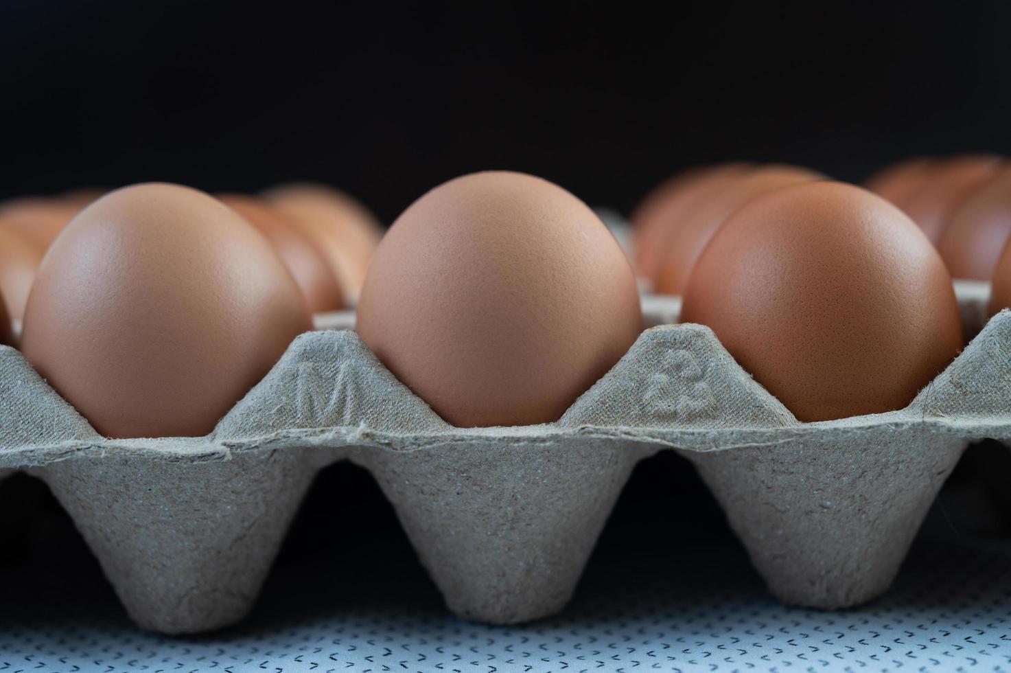 œufs de poule placés sur un plateau à œufs photo