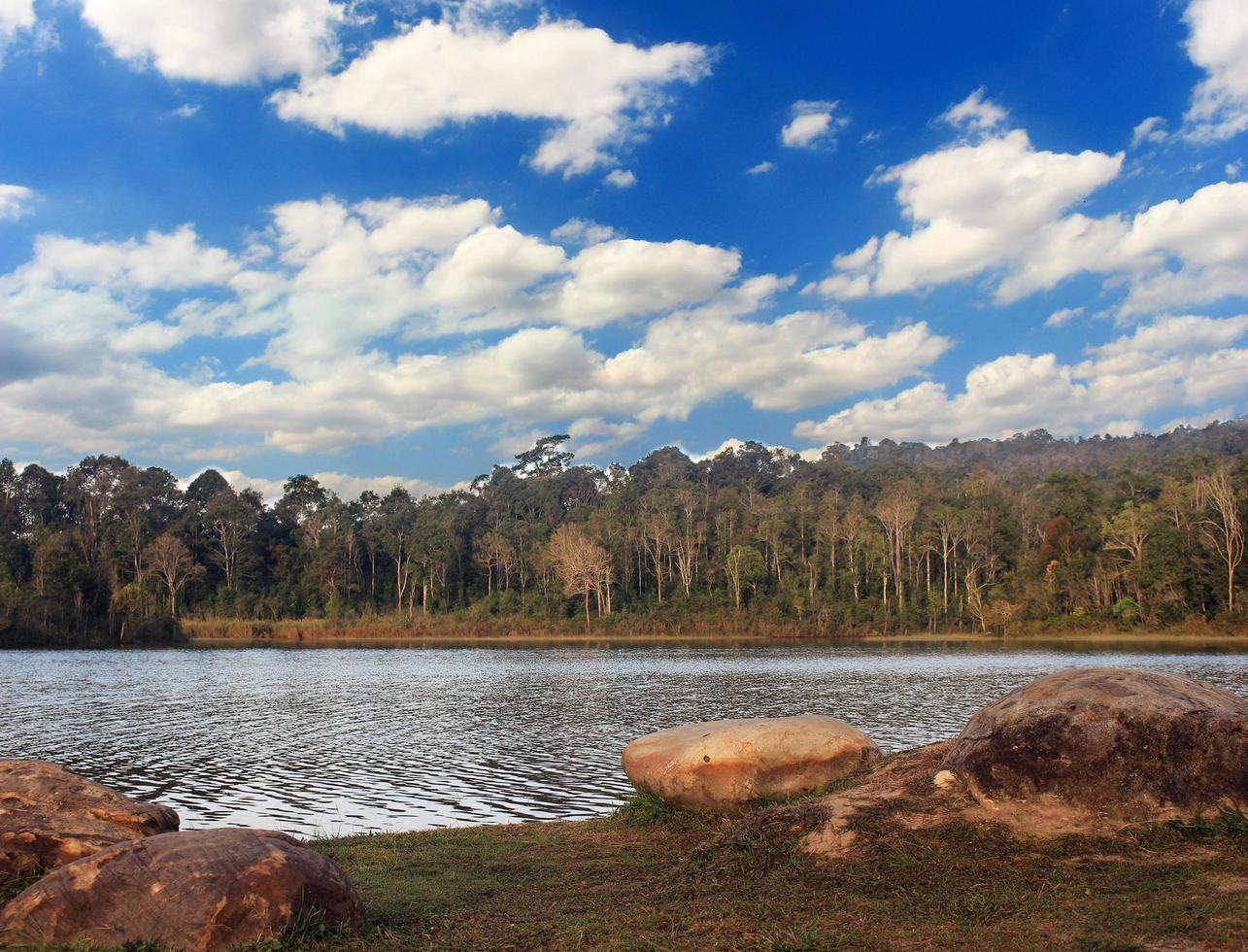 forêt du lac avec un ciel bleu photo