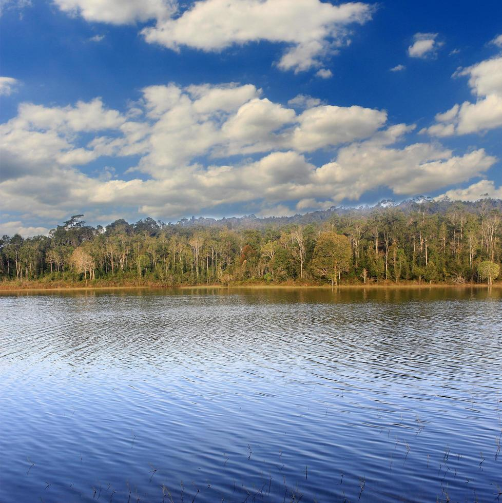 forêt du lac avec ciel bleu et nuages photo