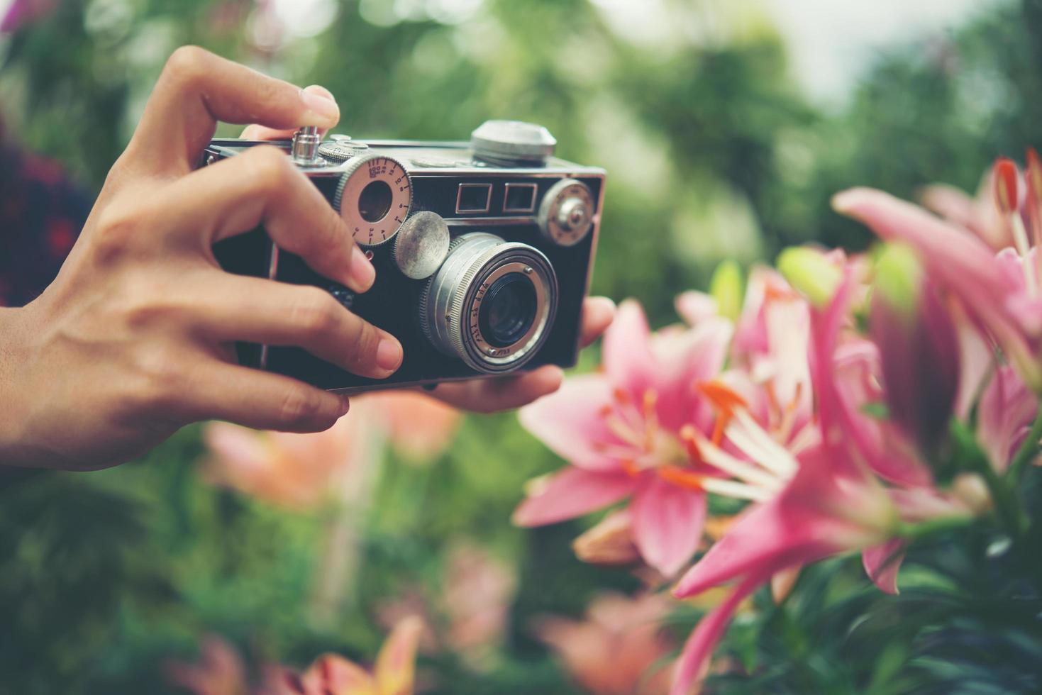gros plan, de, a, main femme, à, a, appareil photo vintage, tir, fleurs, dans, a, jardin