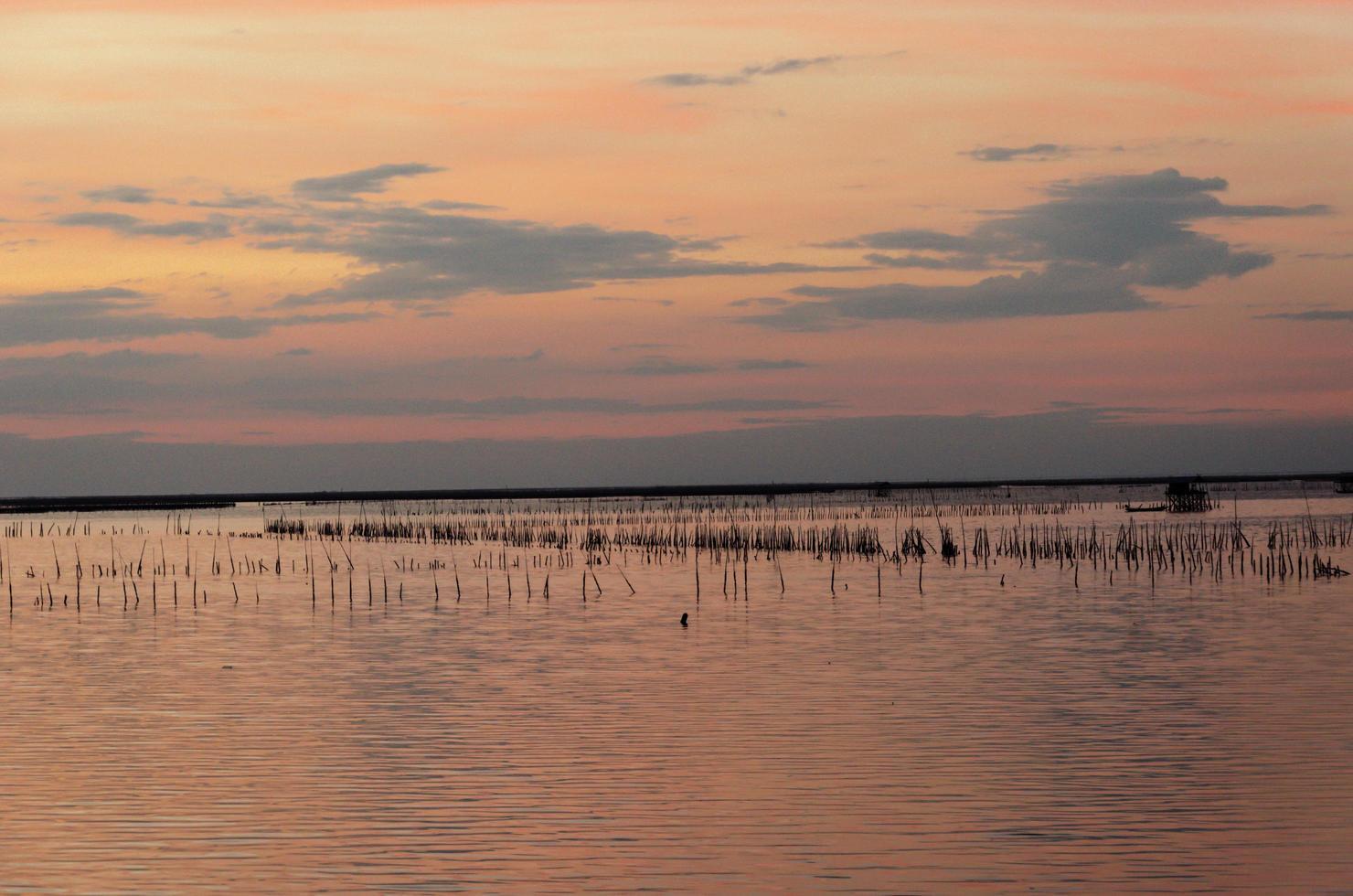beau coucher de soleil pastel photo