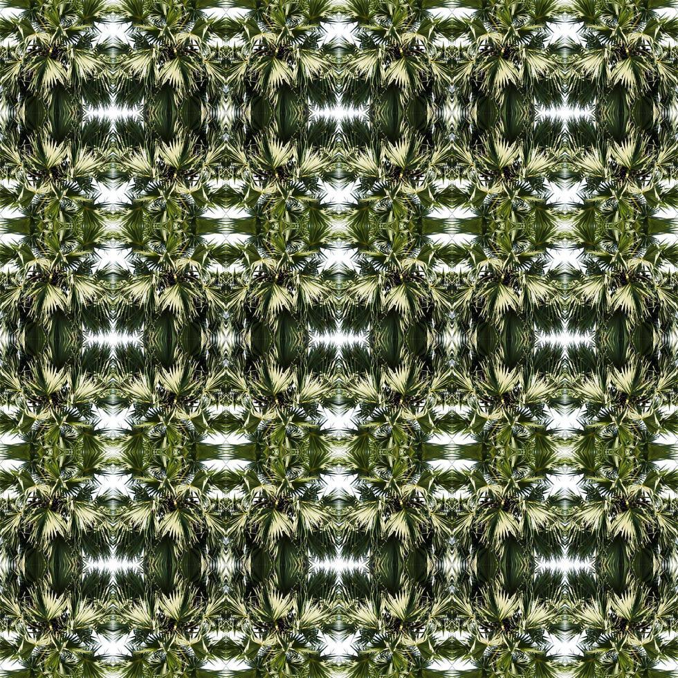 Fond abstrait symétrique d'arbre en miroir photo