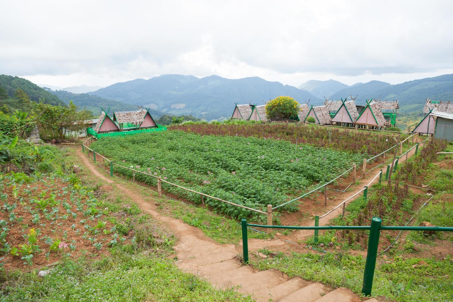 cottages dans une ferme en thaïlande photo