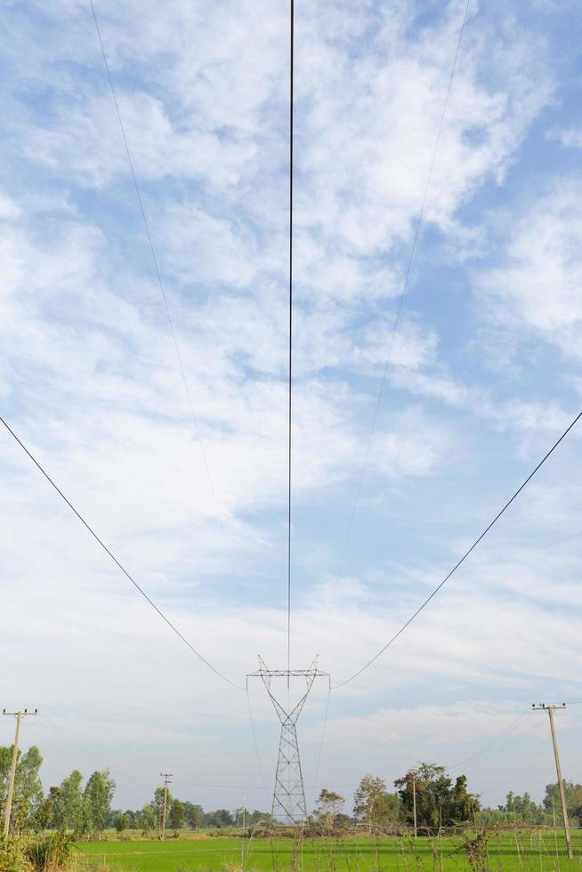 lignes de transport d'électricité sur les rizières photo