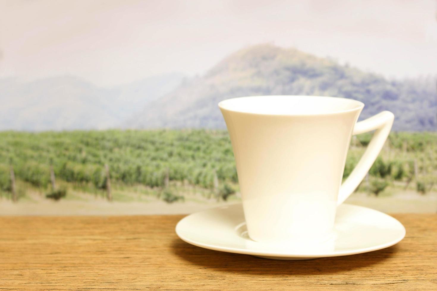 tasse blanche devant un champ photo