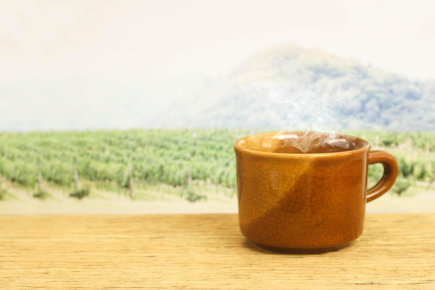 tasse à café marron devant un champ photo
