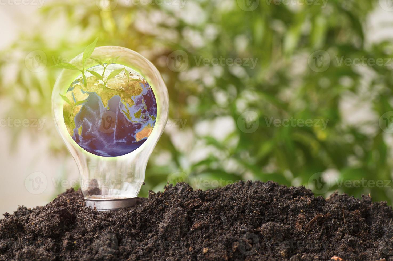 la terre dans l'ampoule grandissent du sol photo