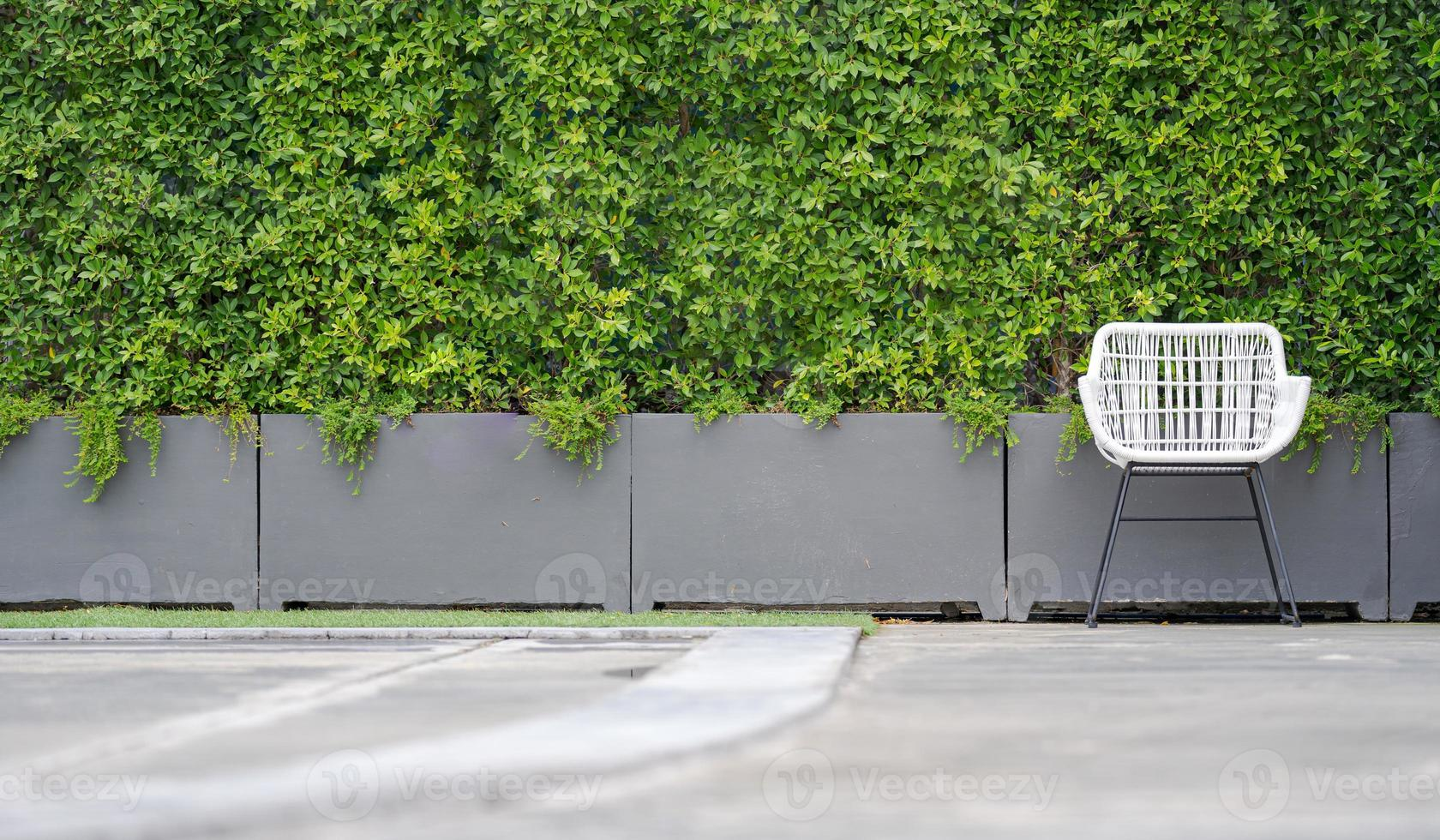 chaise blanche dans le jardin photo
