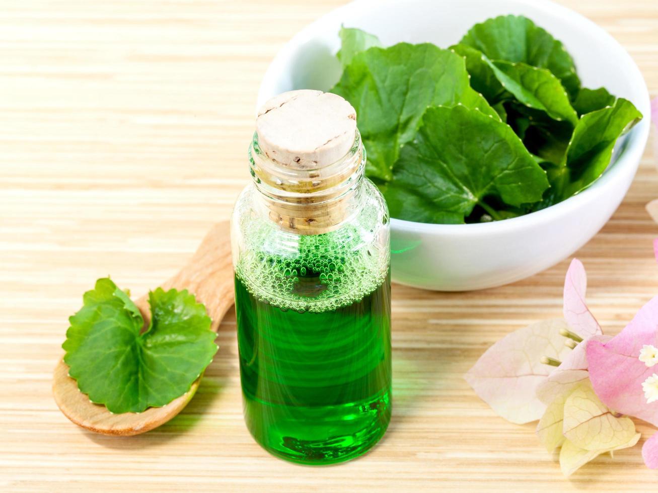 huile de centella asiatica photo