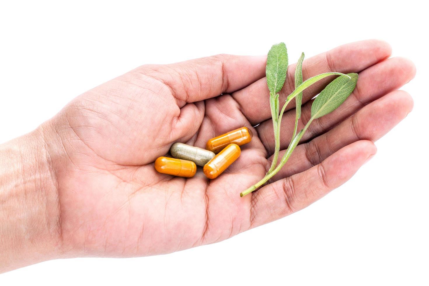 main tenant des herbes et des pilules photo
