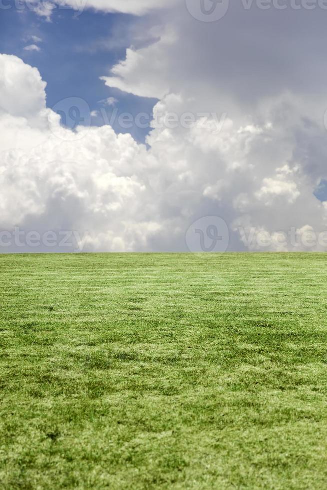 herbe verte et ciel bleu nuageux photo