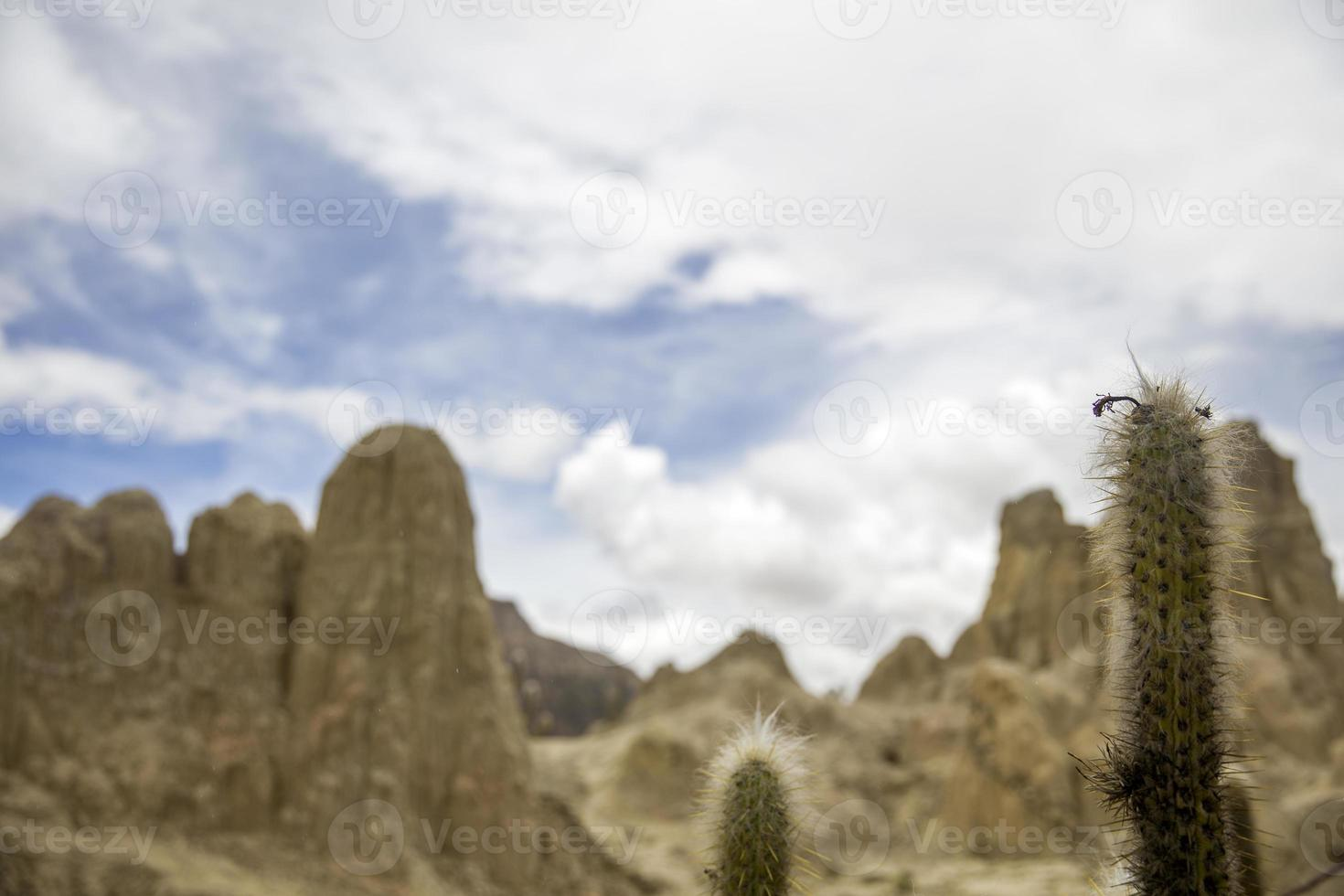 valle de la luna en bolivie photo