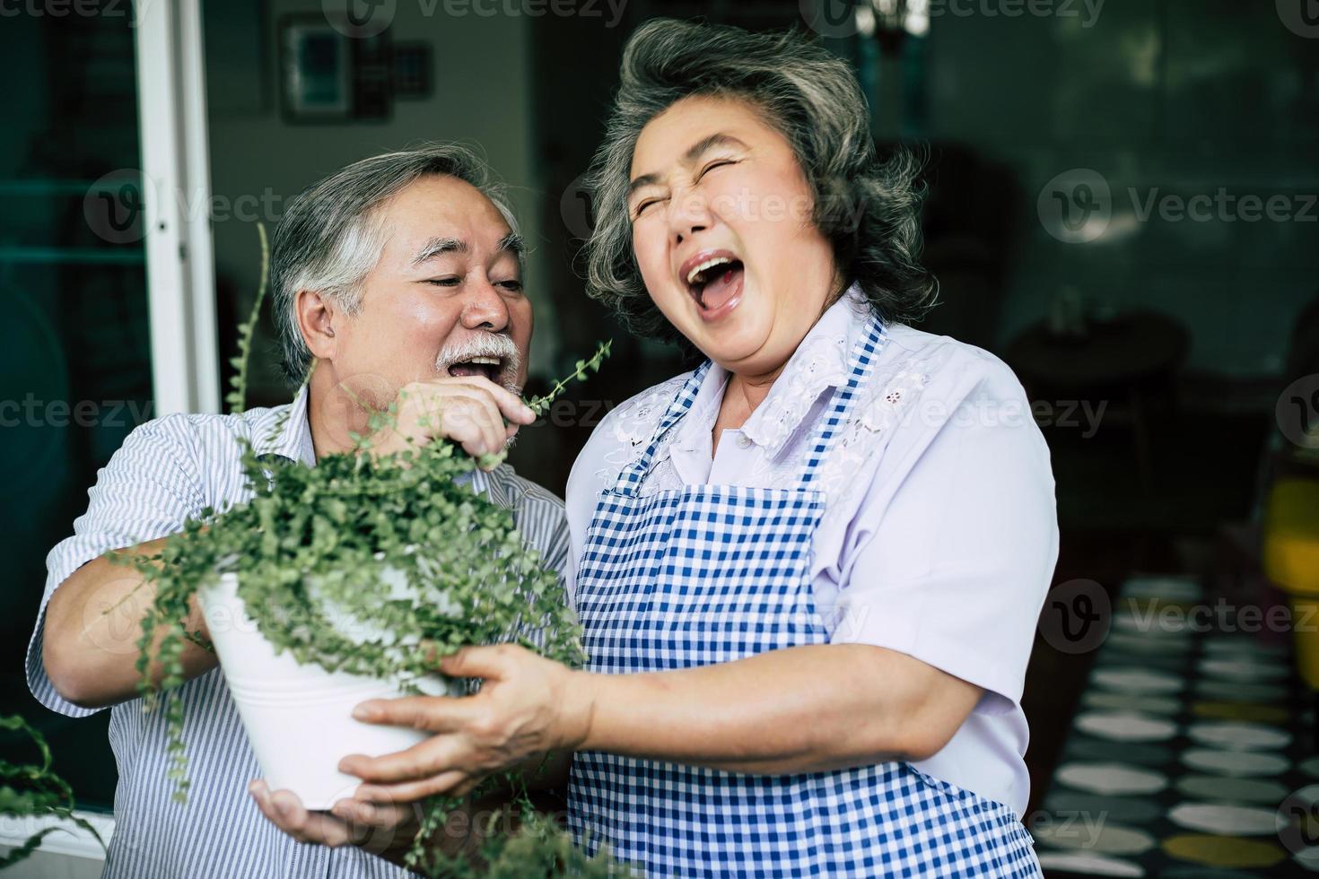 Couple de personnes âgées parler ensemble et planter des arbres dans des pots photo