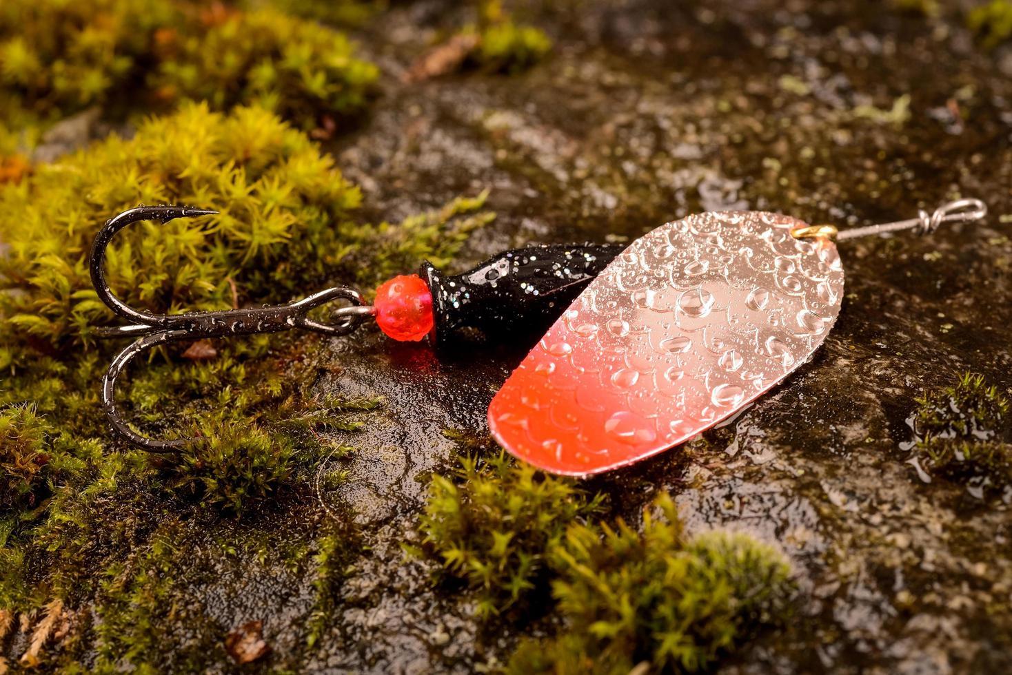 Cuillère de pêche leurre sur pierre humide avec de la mousse photo