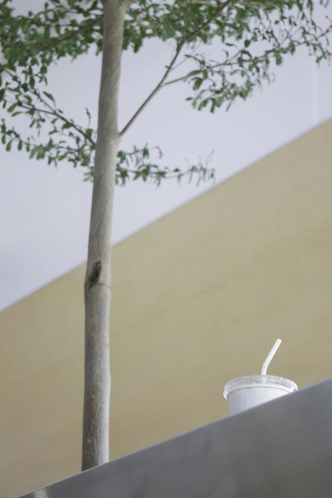 tasse à emporter près d'un arbre photo