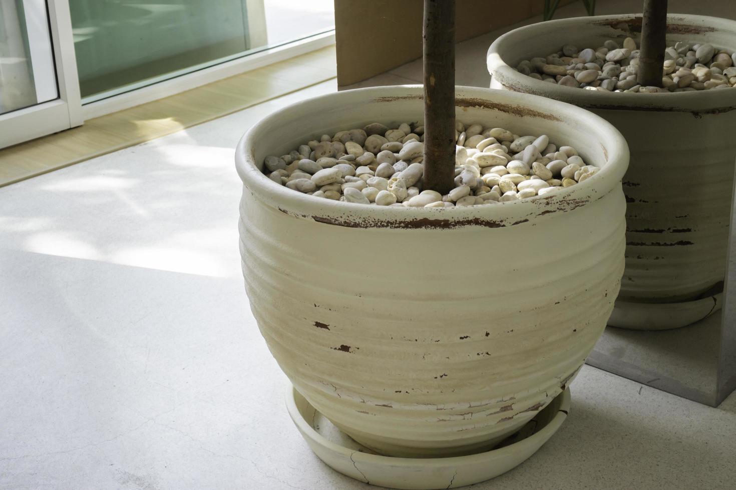 pot de fleurs d'intérieur dans une pièce lumineuse photo