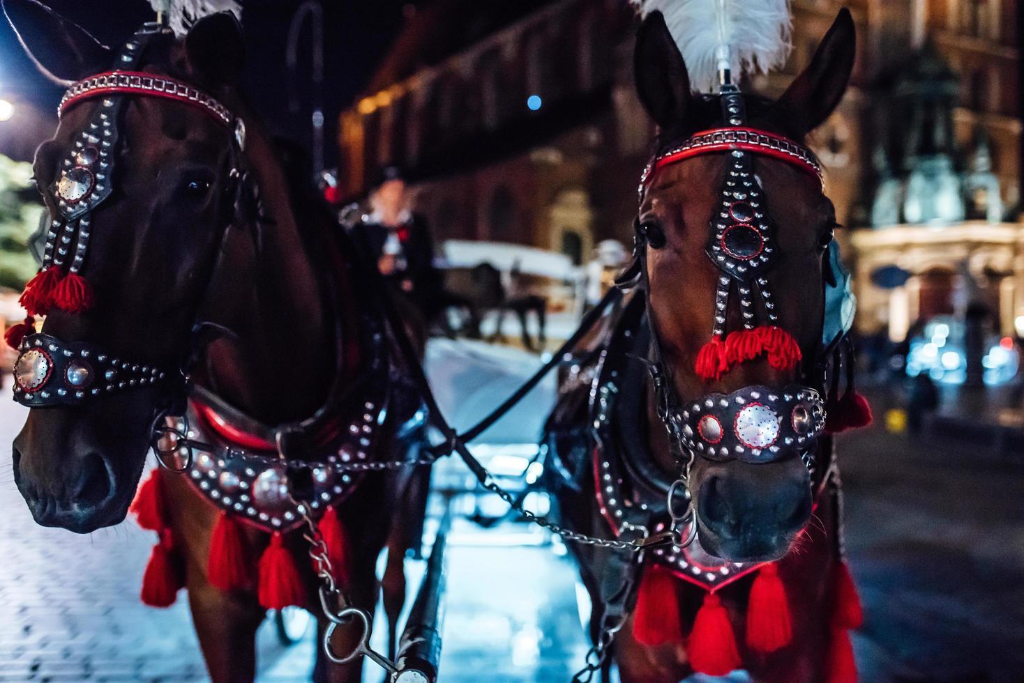 Cracovie, Pologne 2017- la vieille place de la nuit à Cracovie avec des calèches photo