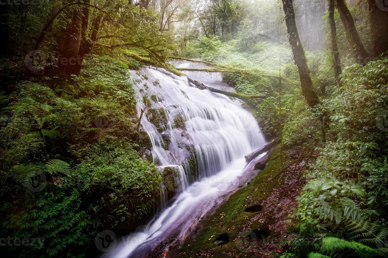 Cascade dans le parc national d'Inthanon, Chiangmai, Thaïlande photo