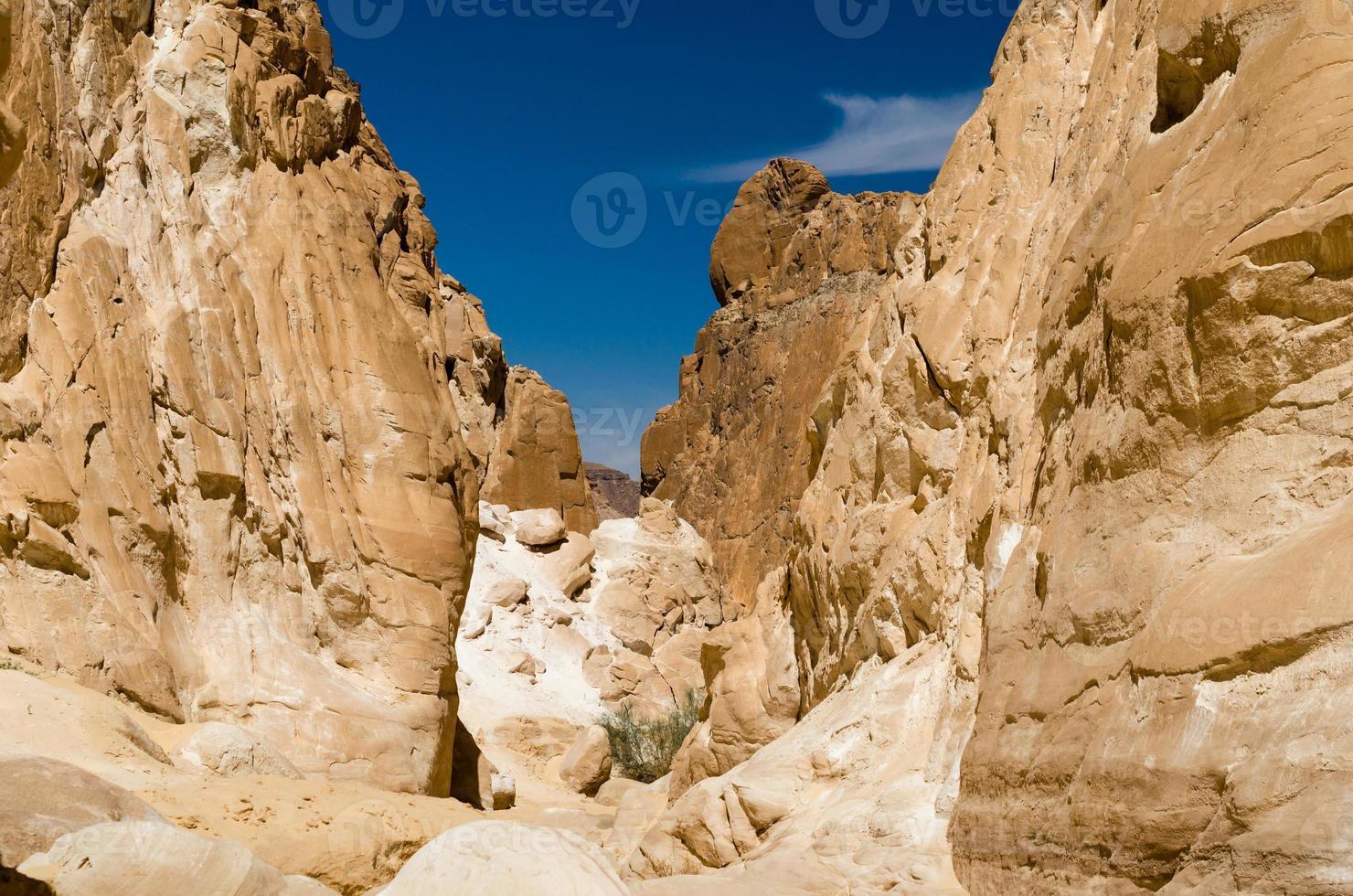 hautes montagnes rocheuses photo