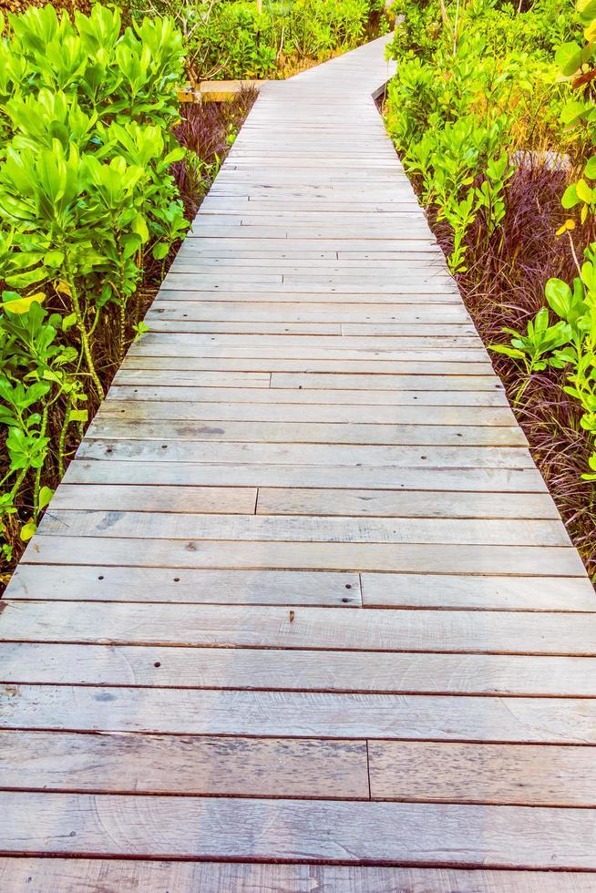 sentier en bois pour marcher photo