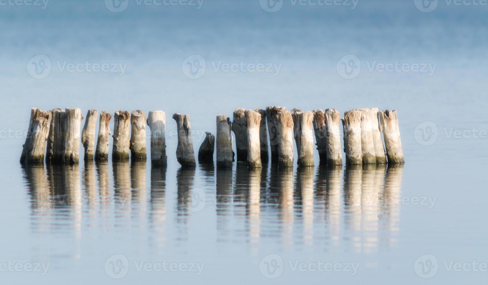 poteaux en bois dans une rangée dans l'eau photo