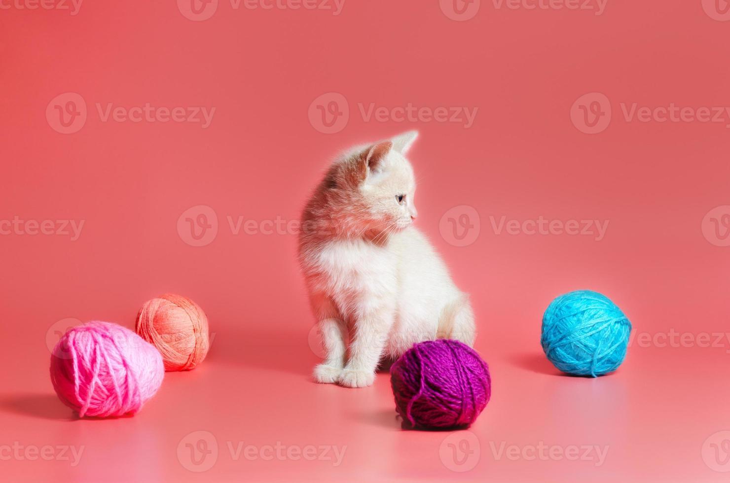 chaton tigré orange avec du fil photo