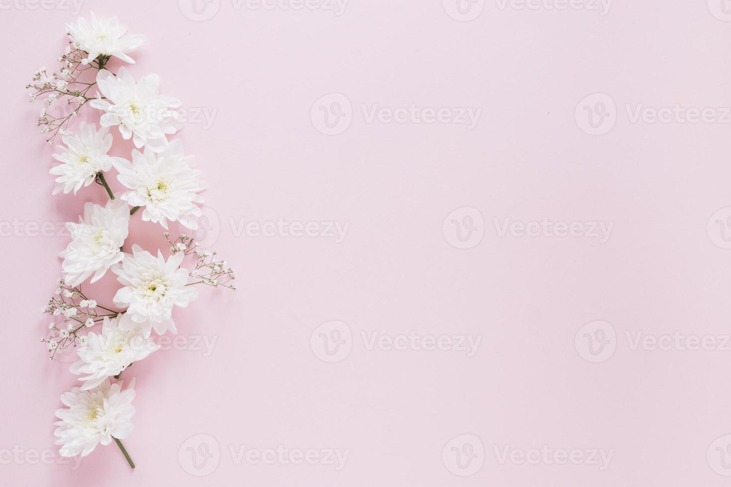 fond de fleurs roses photo
