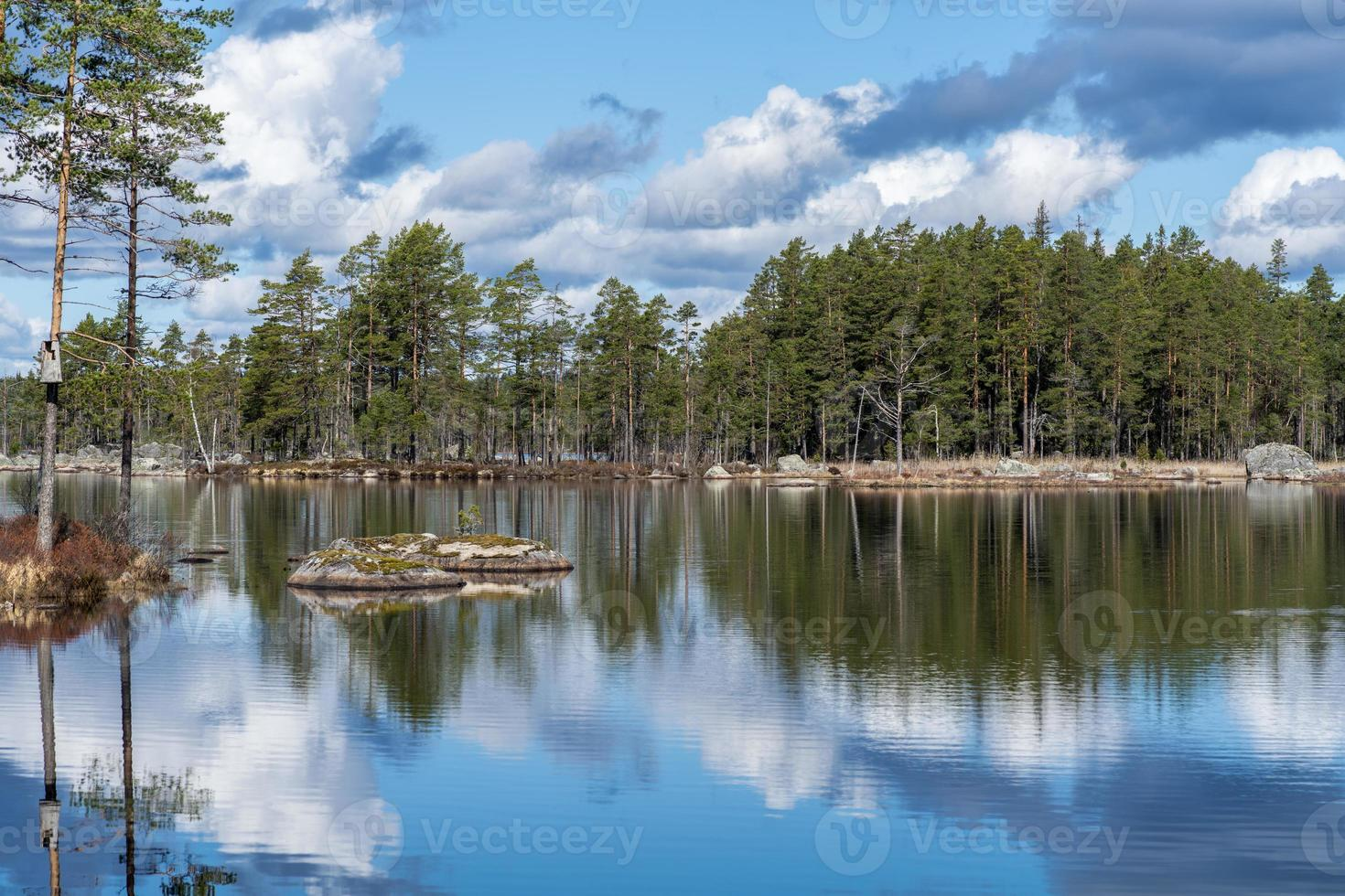 Vue d'été d'un lac de pêche en Suède photo