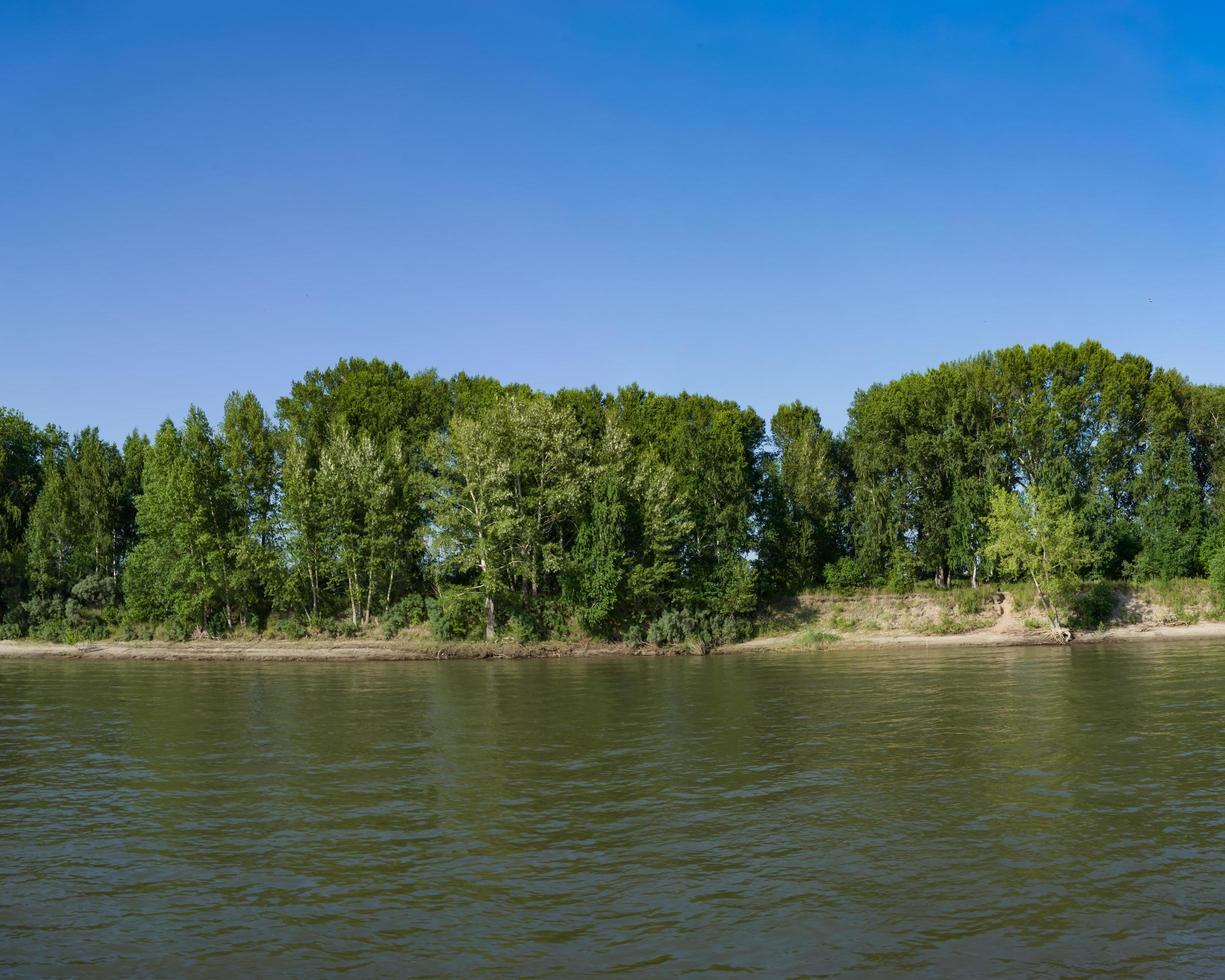 paysage naturel avec le littoral de la rivière photo