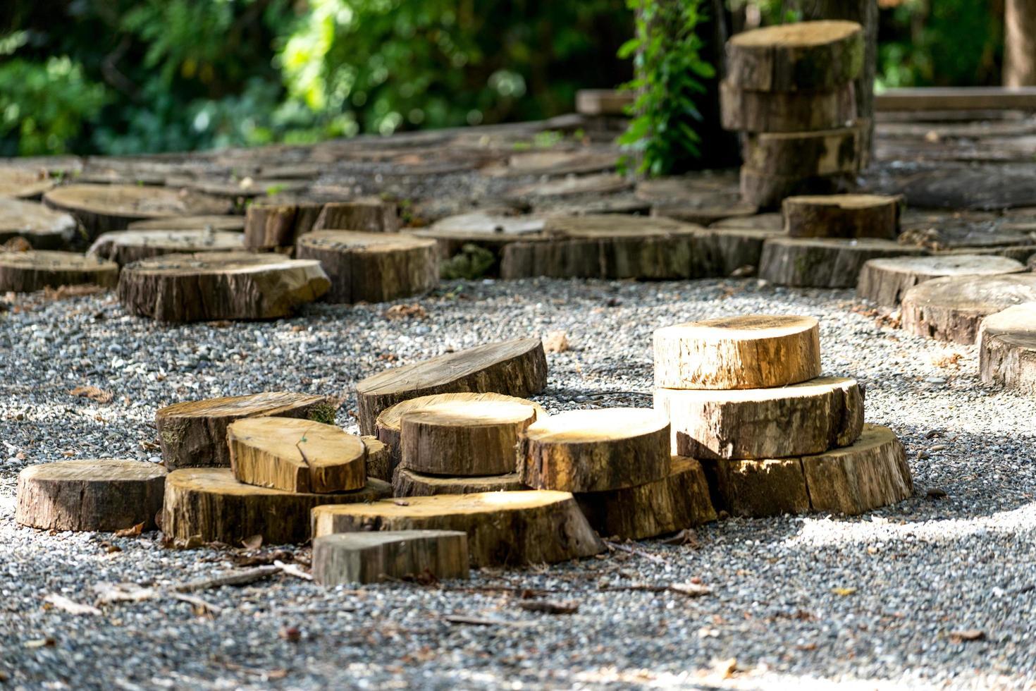 fond naturel avec des disques coupés d'arbres photo