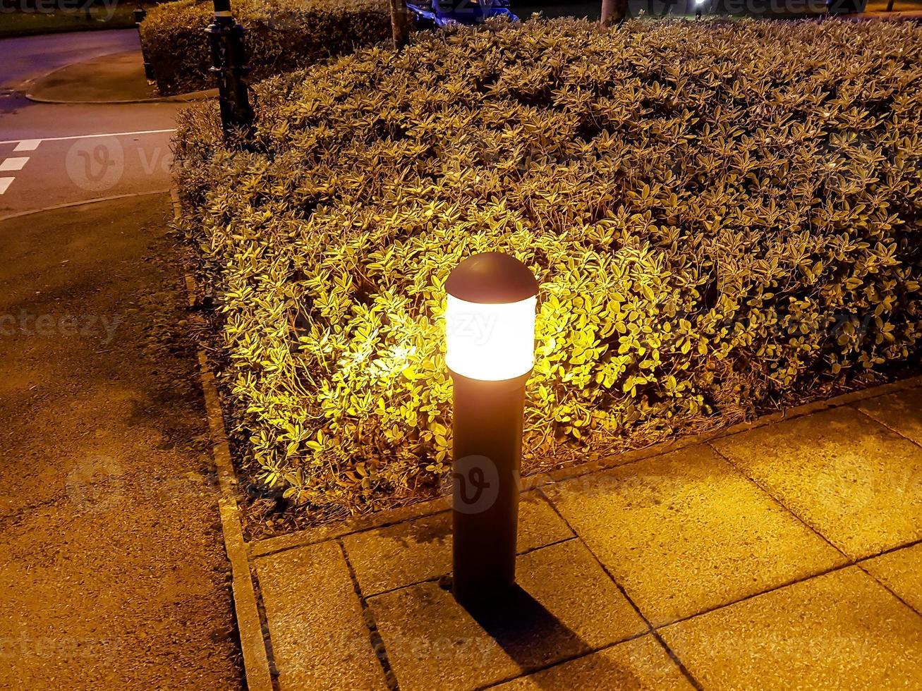 borne lumineuse et buisson photo