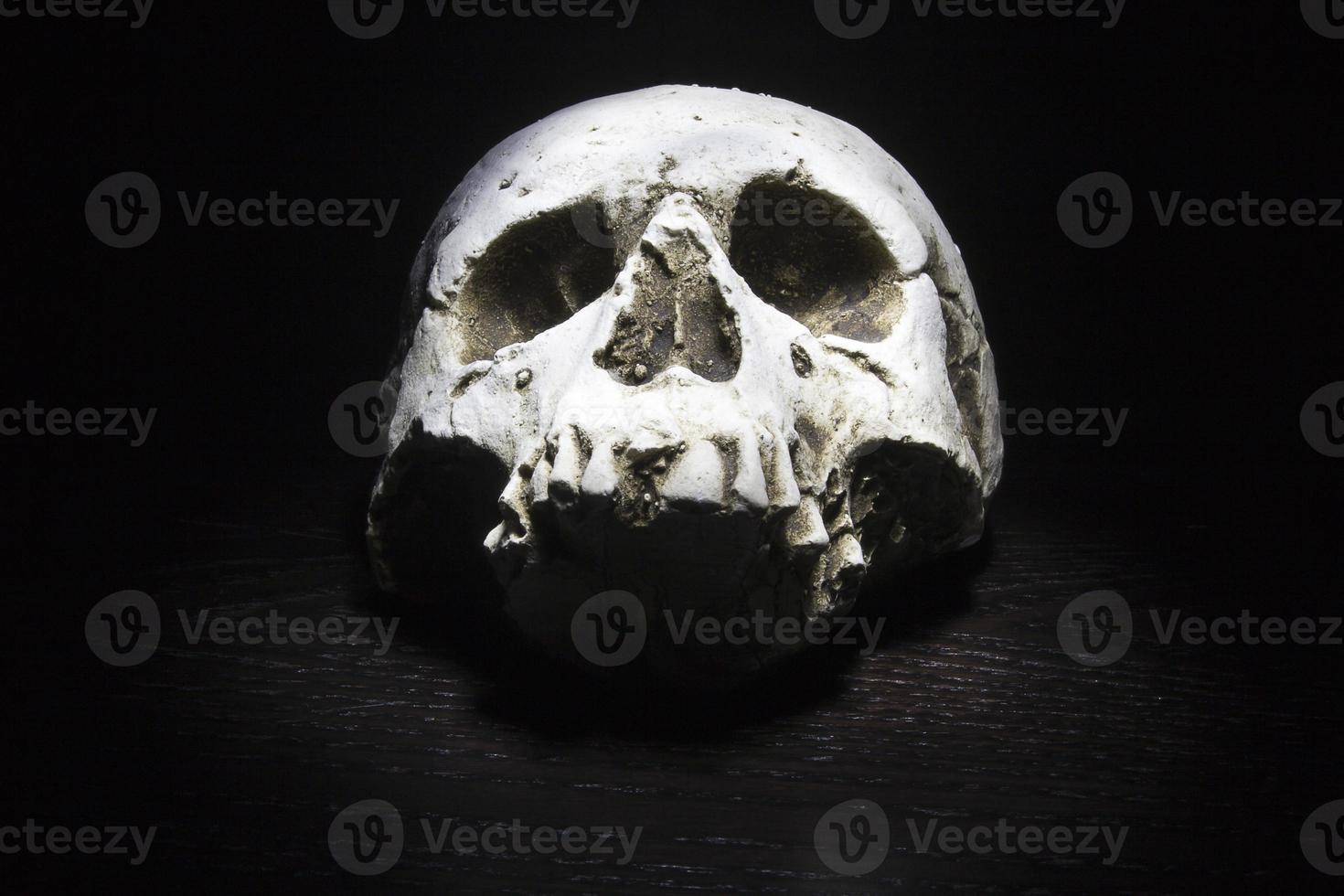 crâne sur fond noir photo