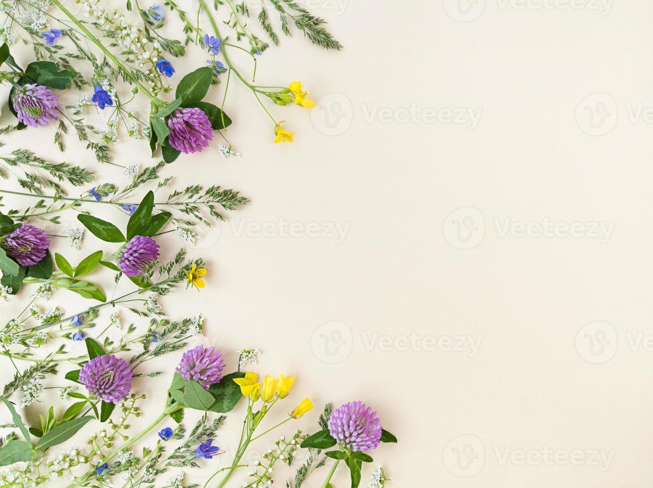 mélange de fleurs sauvages sur fond beige avec espace de copie. photo